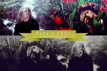 PSD #34 by Evey-V