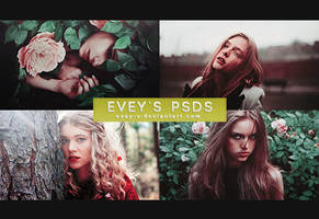 PSD #143 - Greed by Evey-V