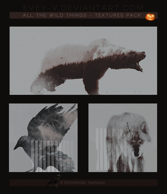 https://orig07.deviantart.net/7c91/f/2016/291/d/b/_42_textures_pack___all_the_wild_things_by_evey_v-dalge38.png