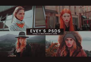 PSD #313 - Carnival by Evey-V