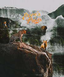 #5 PNG Pack - Wild Things
