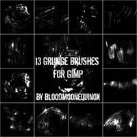13 Grunge Brushes by BloodMoonEquinox