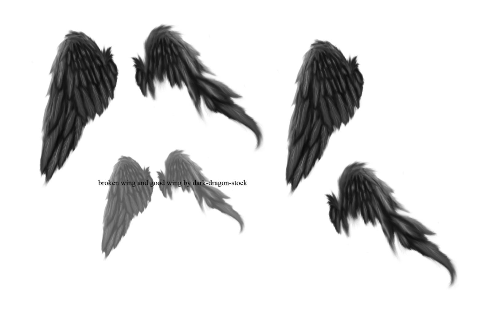 broken wings brushes by dark-dragon-stock