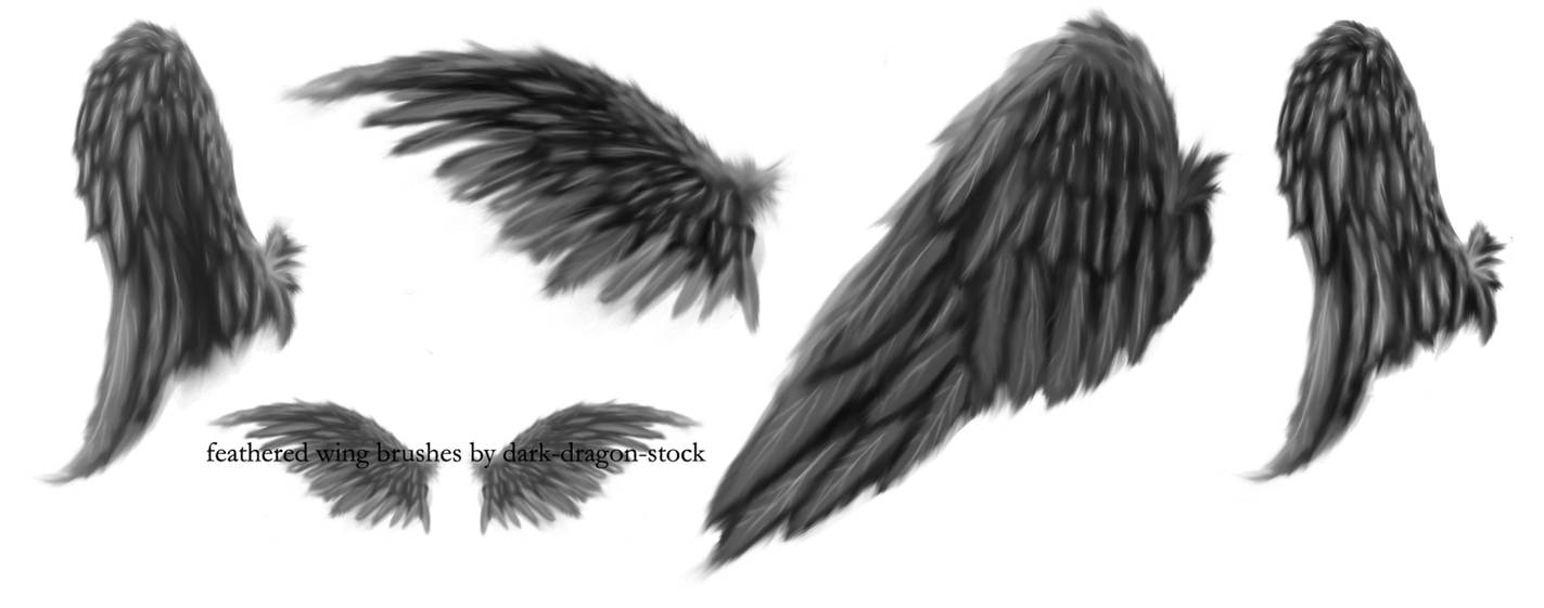 25234985d09 feathered wing brushes by dark-dragon-stock on DeviantArt