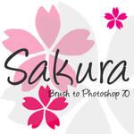 Sakura Brush