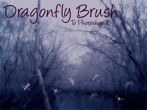 Dragonfly Brush by TheatruMundi