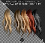 Unrestricted Natural Hair Extensions #1