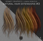 UNRESTRICTED Natural Hair Extensions #3 by liber-spiritus