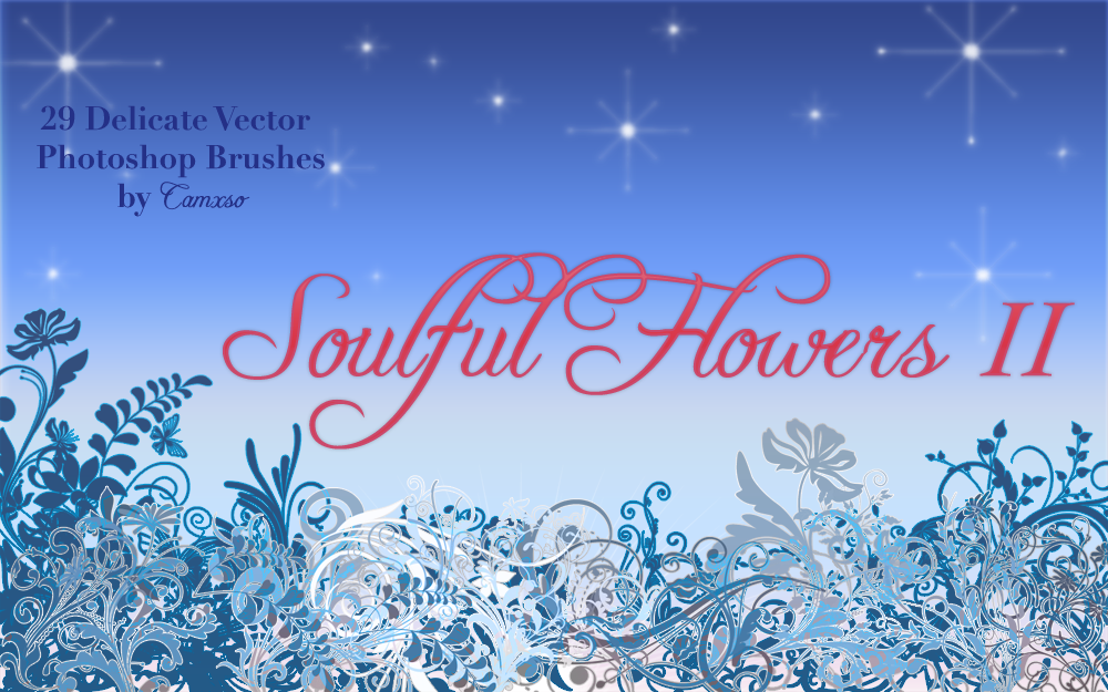 Soulful Flowers II by Camxso