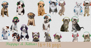 Puppys and Kittens Png Pack by dorina-site