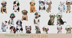 Puppys and Kittens Png Pack
