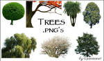 Trees - Transparent .pngs