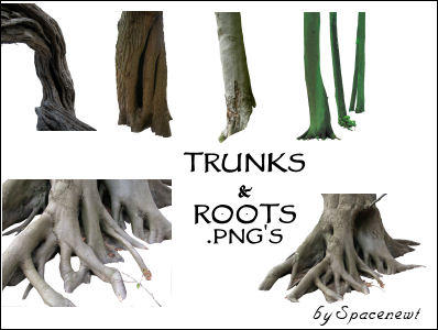 Tree Trunks and Roots - png's