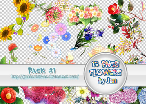 Pack 15 pngs by junsoulsilver