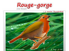 Rouge gorge by tatice