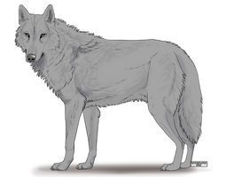 KFCEmployee's FREE Wolf Lineart with Fur/Shading by Chickenbusiness