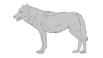 Standing Wolf Lineart (Free, PSD file) by Chickenbusiness