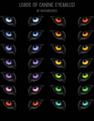 FREE Canine or wolf eyes PNG and PSD! by Chickenbusiness