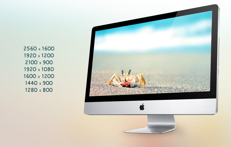 Crab at beach Wallpaper by hoatongoc