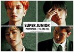 Super Junior - photopack #05