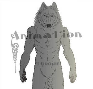 Anthro Wolf Turnaround