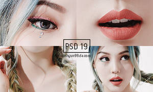 +++PSD19