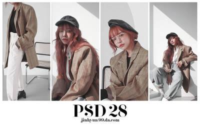 +++PSD28