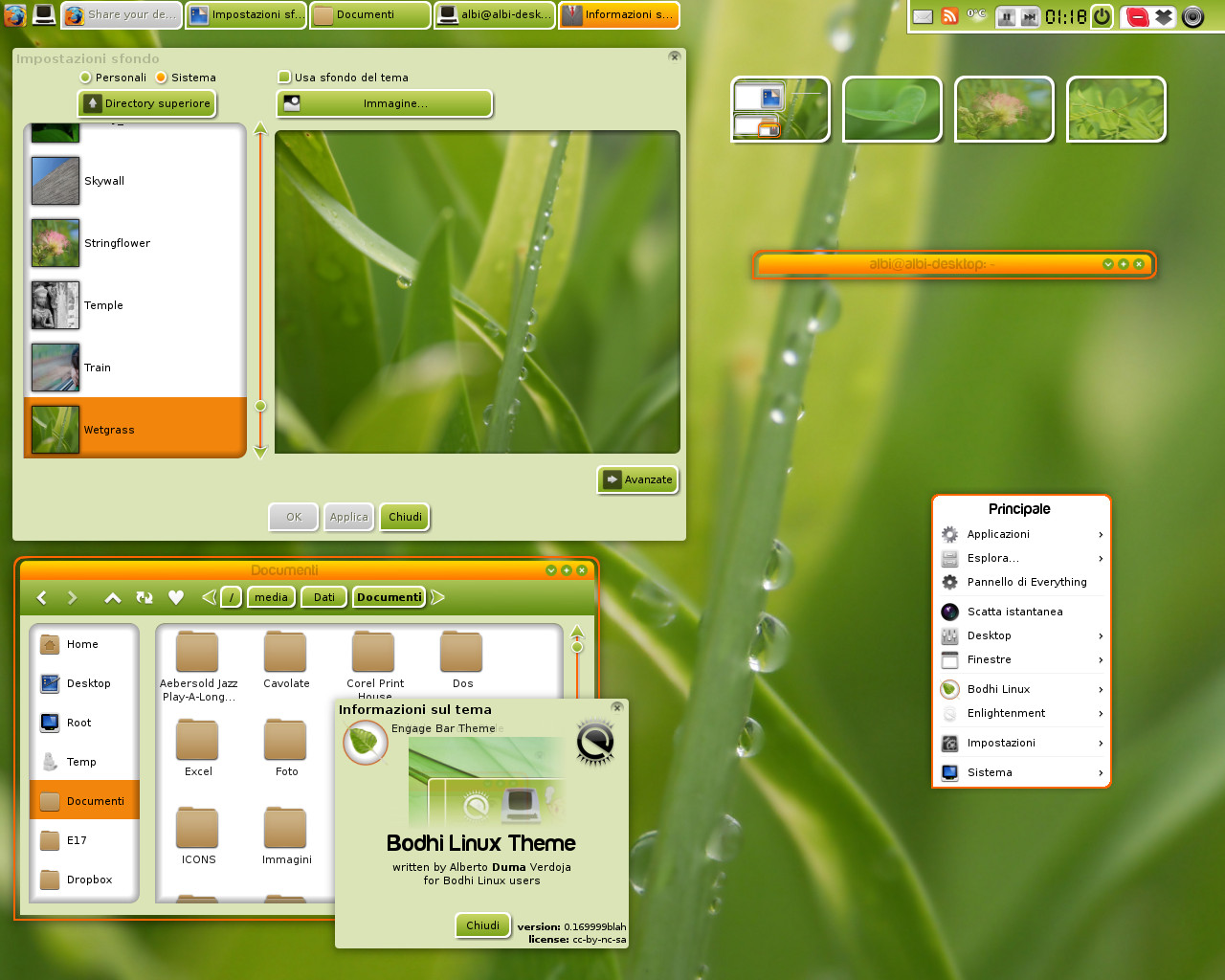 Bodhi Linux E17 Theme by AVDuma