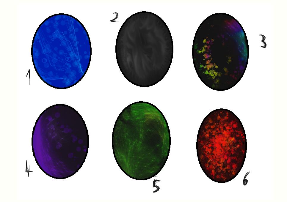 Dragon egg adoptables :Open: [2/6] by TheAdoptArtist