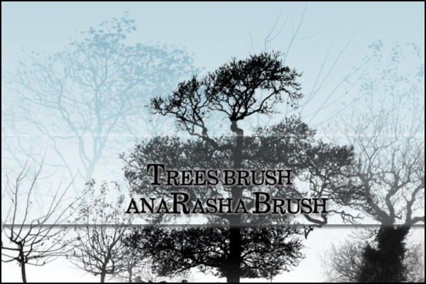 tree  brush