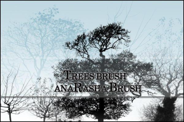 tree  brush by anaRasha-stock