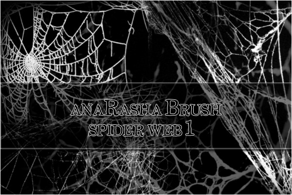spider web brush 1