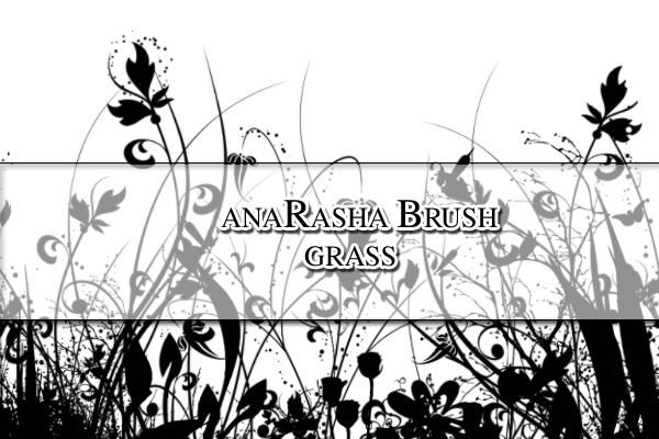 Grass Brush by anaRasha-stock