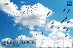 4 Bird Flock Brushes