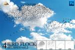 4 Bird Flock Brushes Vol#2