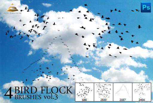 4 Bird Flock Brushes Vol#3 by HJR-Designs