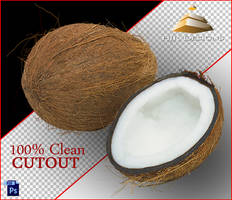 Clean Cutout of a Coconut