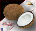 Clean Cutout of a Coconut
