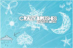 .CrazyBrushes.