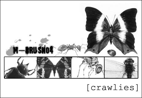 m-brush04-crawlies by m-brush04