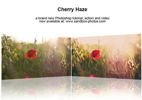 Cherry Haze Photoshop Action