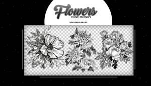 Recursos.FLOWER|PNG'S