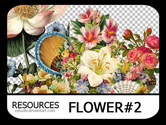 PNG pack #6 - Flower#2 - Vy Tuzki by VyTuzki