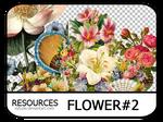 PNG pack #6 - Flower#2 - Vy Tuzki