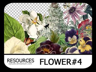 PNG pack #8 - Flower#4 - Vy Tuzki by VyTuzki by VyTuzki