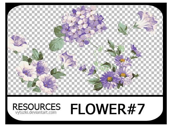 PNG pack #11 - Flower#7 - Vy Tuzki by VyTuzki