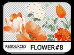 PNG pack #12 - Flower#8 - Vy Tuzki
