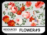PNG pack #13 - Flower#9 - Vy Tuzki