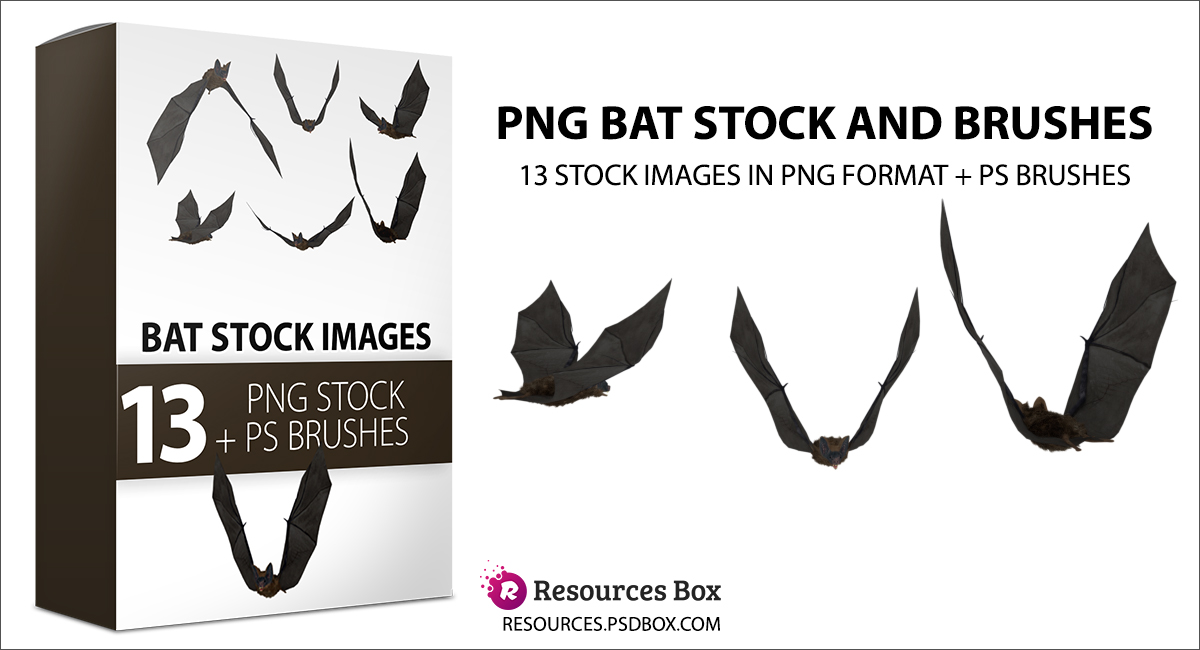 Flying bats PNG Stock and Brushes