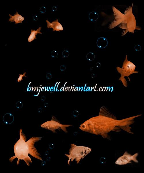 Goldfish Brushes